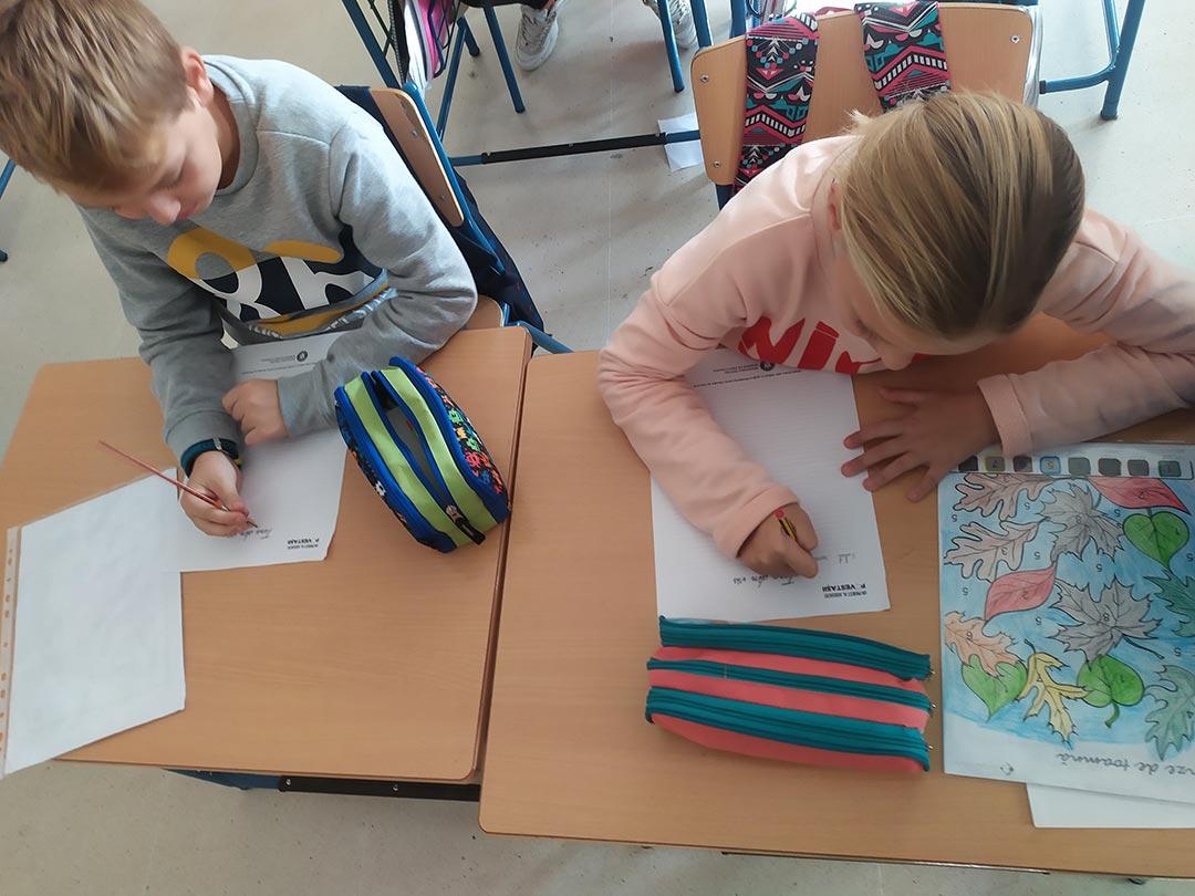 institutul limbii romane spania - tara din vis
